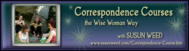 Correspondence Courses - the Wise Woman Way